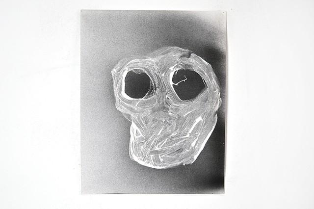 horse skull, no snout