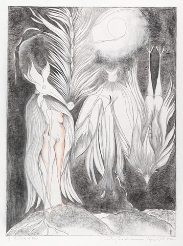 birds, onyx, spiritual, mystical, drawing, Ledesma, surreal, graphite, pastel, paper, moon