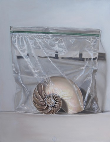Nautilus in Ziploc Bag
