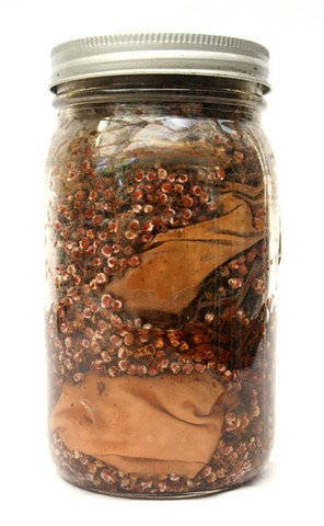 Collected Color VIII Quercus and Rhus detail, jar with sumac berries