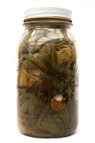 Collected Color VII (Oklahoma to Montana) detail, jar with mullein leaves, found penny