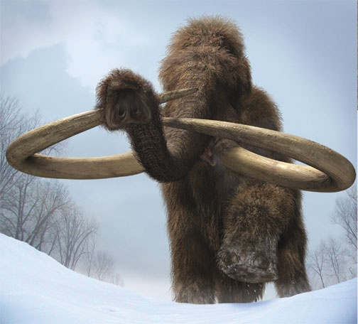 Mammoth (Mega-Beasts/ BWRTE)