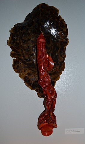 Sculpturally formed banana and fabric dyed turnip pressings. wall sculpture.