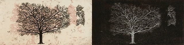 Trace Monotype of trees by Debra Jewell artist & printmaker, Pacific Grove Art Center, Pacific Grove CA