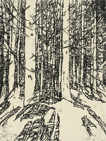 Trace Monotype print of forest trees with Chine Collé on Rives BFK printmaking paper by artist printmaker Debra Jewell