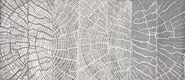 Trace Monotype of tree growth rings, by Debra Jewell artist & printmaker