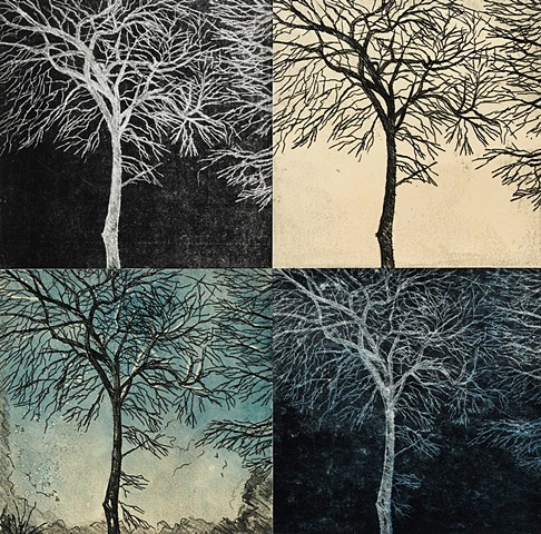 Trace Monotype print of trees with Chine Collé on Rives BFK printmaking paper by artist printmaker Debra Jewell