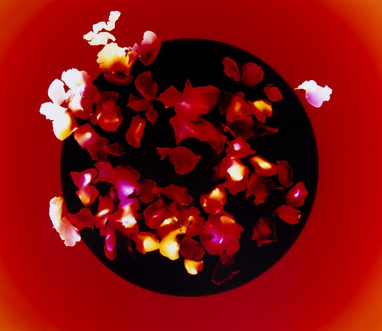 Crimson Flower Offering