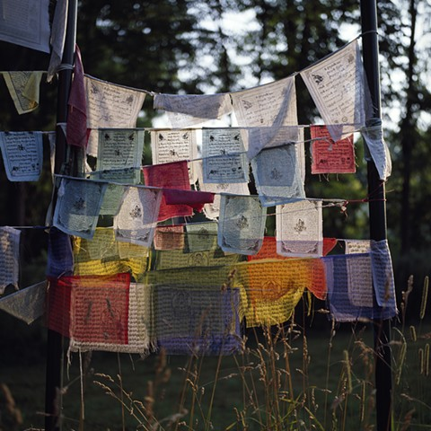 Prayer Flags on the Edge of the Woods #2, Orgyen Chö Dzong, New York, 2010