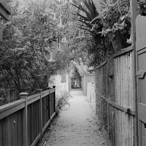 Walkstreet #8