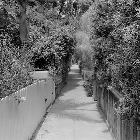 Walkstreet #5