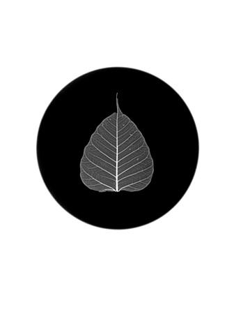 Bodhi Leaf Pluriverse