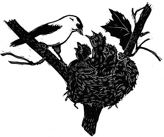 Woodcut of a Finch perched on a branch feeding her young