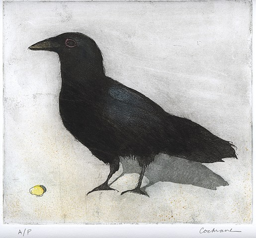 A crow is about to eat a kernel of corn.
