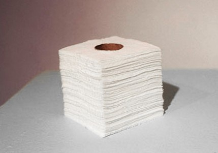 Artist Adam David Brown, Soft Wood, Toilette Paper, Holes