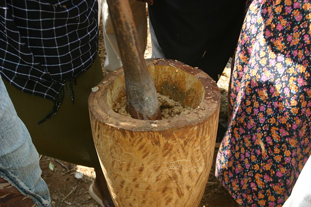 Sustainable Biofuel Option for Kasiagu