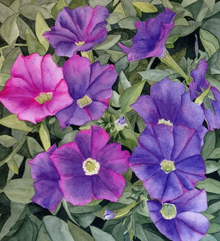 Petunias and leaves in watercolor