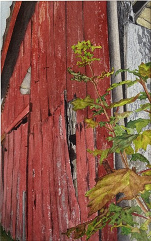 As Time Goes By Vermont Barn in watercolor