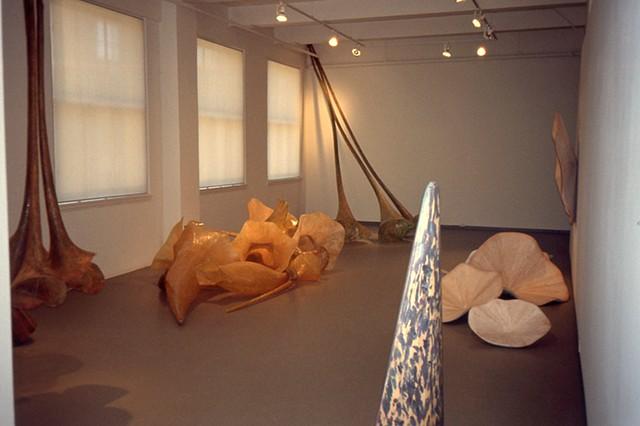 J MOMA Installation