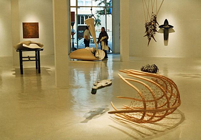Gallery Installation New  Orleans