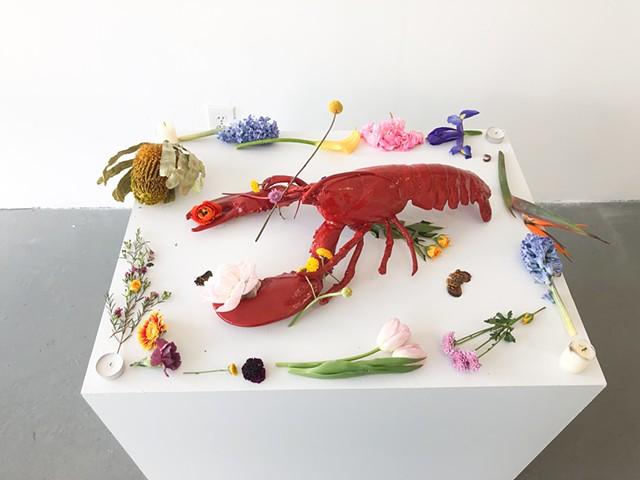 GUCHI Lobster