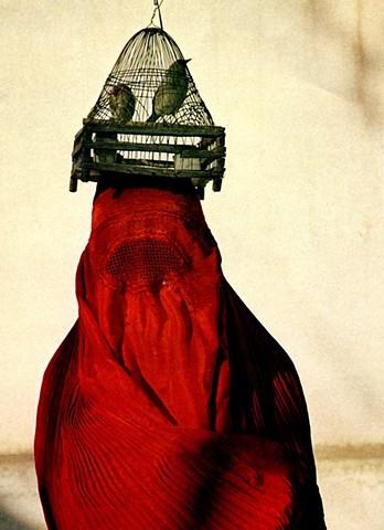 Iranian Woman (Web Image)