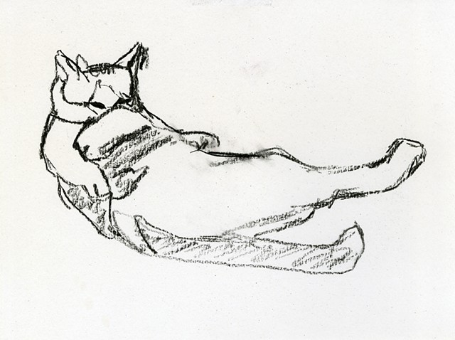 study for cat bath II