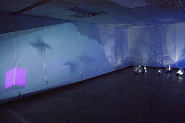 bell jars, video, new media instalation, time based installation, shadows, kinetic
