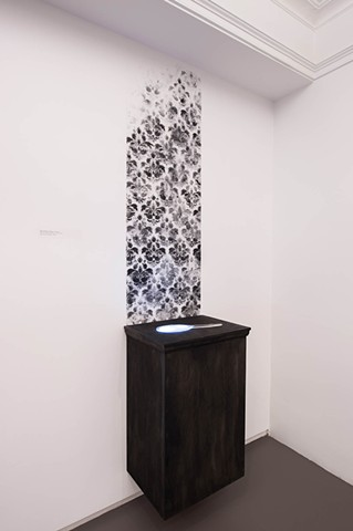 Ashes wallpaper, kiln cast glass, video, wood