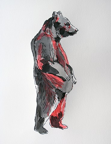 (Black & Red Bear)