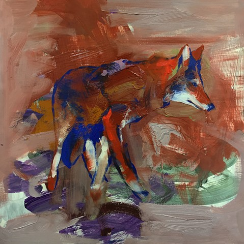Untitled (coyote study in rust & blue)