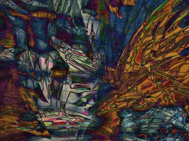 Butterflies, Computer art based off of digital altered photographs.