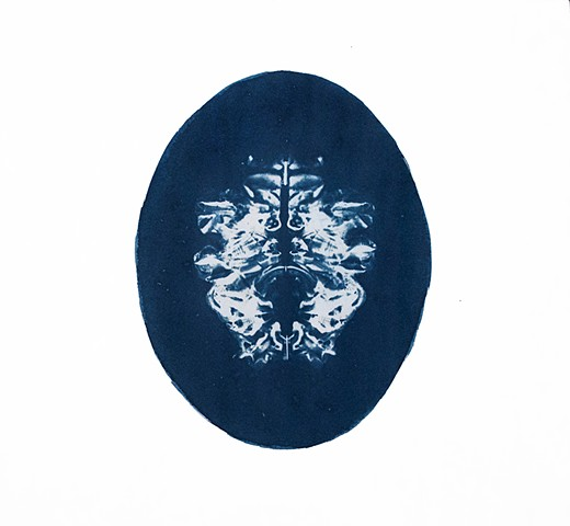 cyanotype, camera-less photography, alternative photography, abstract, bilateral symmetry, inkblot, Rorschach, Holtzman, apophenia, pareidolia