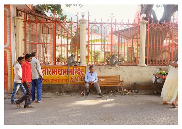 'two monkeys & man sitting nonchalantly, Rishikesh'