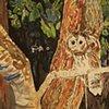 Howard the Barred Owl