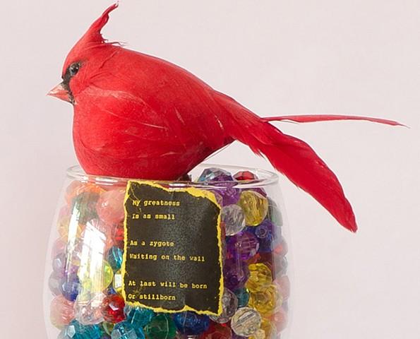 """ARTERRIUMS """"Red Bird"""" Detail"""