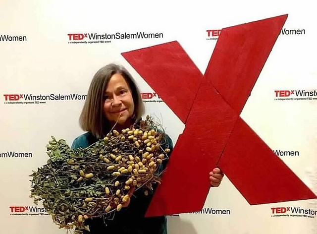 TEDx Winston-Salem, Salem College, Winston-Salem, NC, 2016 - The Relevance of Rural America