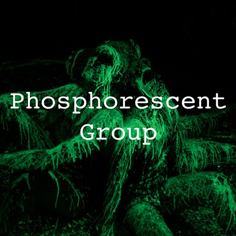 Phosphorescent Group