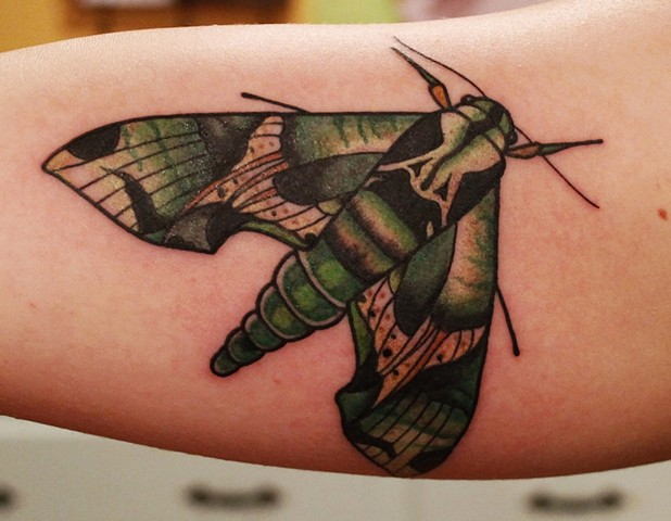Moth Tattoo by Fran Massino of Stay Humble Tattoo Company in Baltimore Maryland