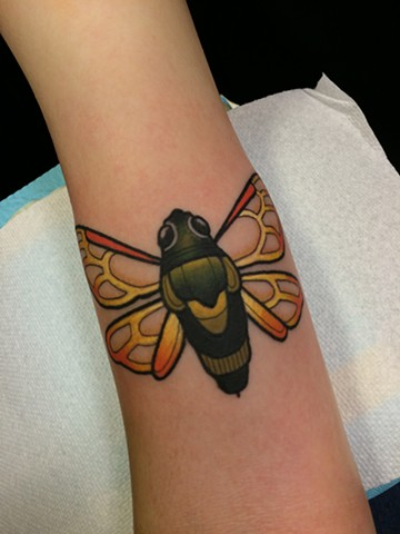 Cicada tattoo by Dave Wah