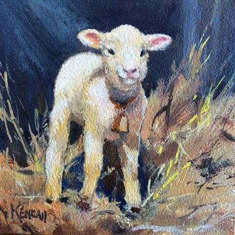 Little Lamb Standing