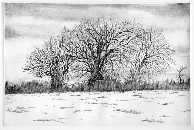 Three Winter Trees