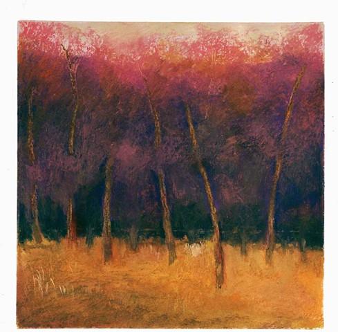 Autumn Trees Oil Pastel on Paper 15'' x 15''