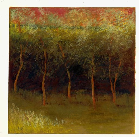 Spring Trees II Oil Pastel on Paper 15'' x 15''
