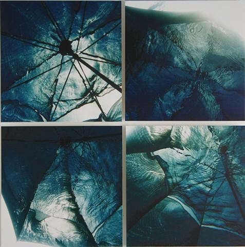 "BRELLAS  digital c-prints  (4) 16"" x 16"""