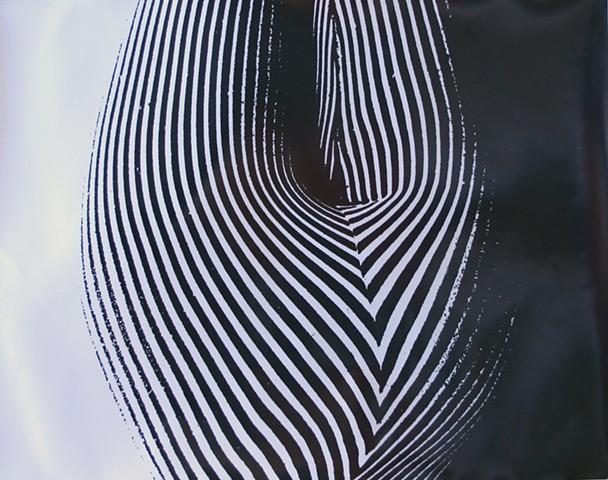 STRIPES  gelatin silver print photograph
