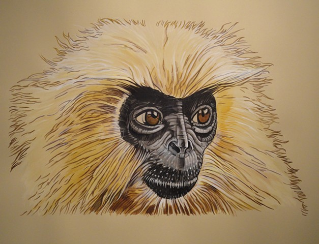 Golden Langur (from the Apologies to the Future series)