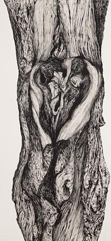 Tree No.16, Woodbridge