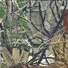 Landscape VT