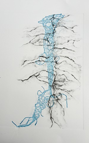 bobbin lace, roots, mapping, monotype